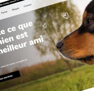 Création de site web Boutique Canine