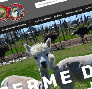 Création de site web Ferme Bel Alpaga